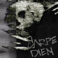 STED.D - CARPE DIEM