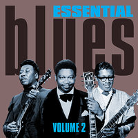 Essential Blues - Volume 2 — сборник