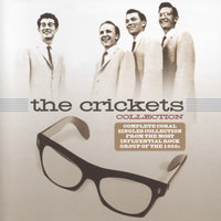 The Collection — The Crickets