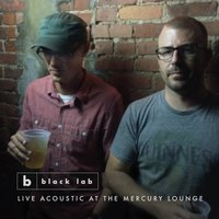 Live Acoustic at the Mercury Lounge — Black Lab