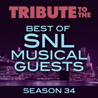Tribute to the Best of SNL Musical Guests Season 34 — Deja Vu