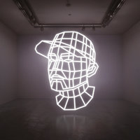 Reconstructed : The Best Of DJ Shadow — DJ Shadow