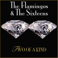 2 of a Kind — The Flamingos & The Sixteens