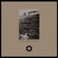 Altamont Rising — Shift