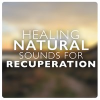 Healing Natural Sounds for Recuperation — Healing Sounds for Deep Sleep and Relaxation