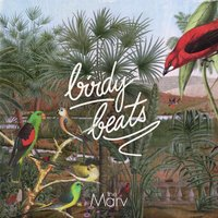 Birdy Beats — The Marv
