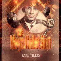 The Mega Collection — Mel Tillis