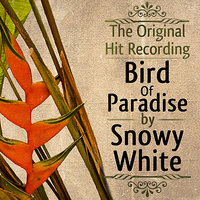 The Original Hit Recording - Bird of Paradise — Snowy White