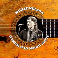 Slow Down Old World — Willie Nelson