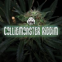 Colliemonster Riddim — Pharfar
