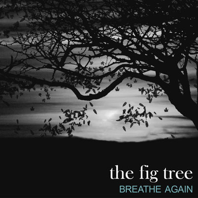 the fig tree people Jesus curses a fig tree and clears the temple courts - the next day as they were leaving bethany, jesus was hungry seeing in the distance a fig tree in leaf, he went to find out if it had any fruit.