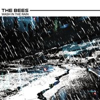 Wash In The Rain — The Bees