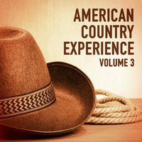 The American Country Experience, Vol. 3 — сборник