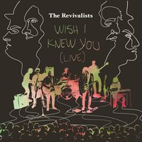 Wish I Knew You — The Revivalists