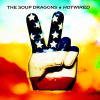 Hotwired — The Soup Dragons