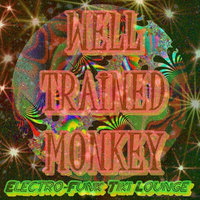 Electro-Funk Tiki Lounge — Well Trained Monkey
