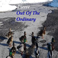 Out of the Ordinary — Pierre