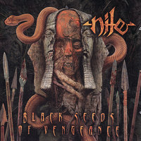 Black Seeds of Vengence — Nile