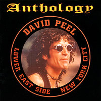 Anthology — David Peel, The Lower East Side