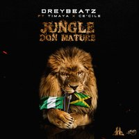 Jungle Don Mature — Timaya, Ce'Cile, Drey Beatz