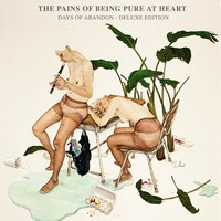 Days of Abandon — The Pains Of Being Pure At Heart