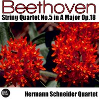 Beethoven: String Quartet No. 5 in A Major, Op.18 — Hermann Schneider Quartet