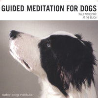 Guided Meditation For Dogs — Satori Dog Institute