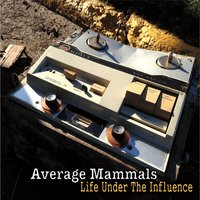 Life Under the Influence — Average Mammals