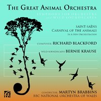 The Great Animal Orchestra, Symphony for Orchestra and Wild Soundscapes — Камиль Сен-Санс, The BBC National Orchestra Of Wales, Richard Blackford, Bernie Krause, Martyn Brabbins