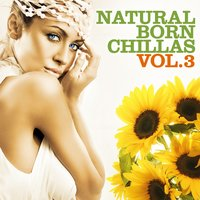Natural Born Chillas, Vol. 3 — сборник