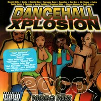 Dancehall Xplosion 2000 — Various Artists - Jamdown Records
