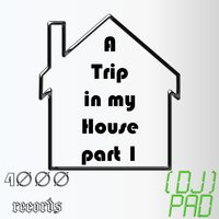 A Trip in My House, Part 1 — Dj Pad