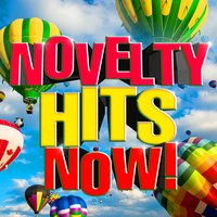 Novelty Hits Now! — Super Hot Masters