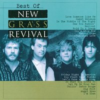 Best Of New Grass Revival — New Grass Revival