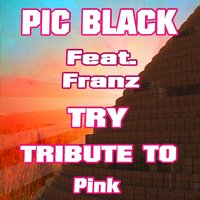 Try: Tribute to Pink — FRANZ, Pic Black