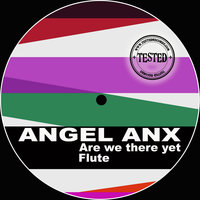 Flute - There — Angel Anx