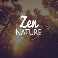 Zen Nature — Outside Broadcast Recordings, Sleep Music with Nature Sounds Relaxation, Nature's Mystic Moods, Relaxing Waves, Sleep Music with Nature Sounds Relaxation|Nature's Mystic Moods|Relaxing Waves