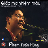 A Wonderful Dream Giac Mo Nhiem Mau — Pham Tuan Hung
