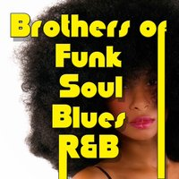 Brother of Funk Soul Blues R&B — сборник