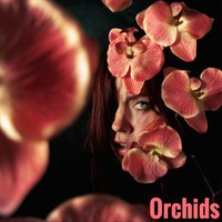 Orchids — Jennifer Brown, WhizDumb, Apollo Piero