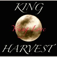 Young Love — King Harvest