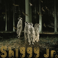 Ghost Party — Shiggy Jr.
