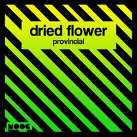 Provincial — Dried Flower