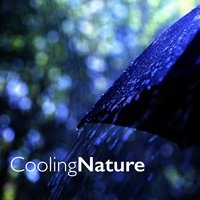 Cooling Nature — Ambiance Nature