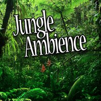 Jungle Ambience (Nature Sounds) — Atmosphere Collection