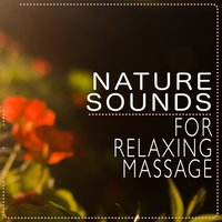 Nature Sounds for Relaxing Massage — Massage Music, Sleep Sounds Of Nature, Massage Music|Nature Sounds|Sleep Sounds of Nature