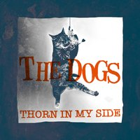 Thorn in My Side — The Dogs