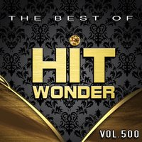 Hit Wonder: The Best of, Vol. 500 — сборник
