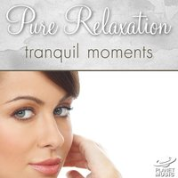 Pure Relaxation: Tranquil Moments — The Hit Co.