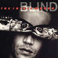 Blind — The Icicle Works